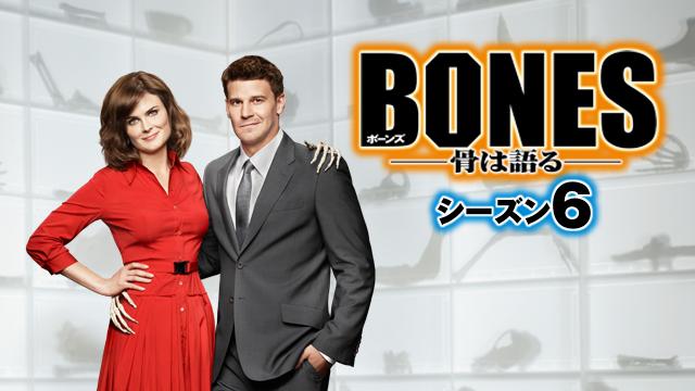 『BONES ―骨は語る― シーズン6』が視聴できる動画配信サイト
