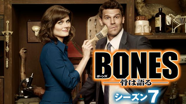 『BONES ―骨は語る― シーズン7』が視聴できる動画配信サイト