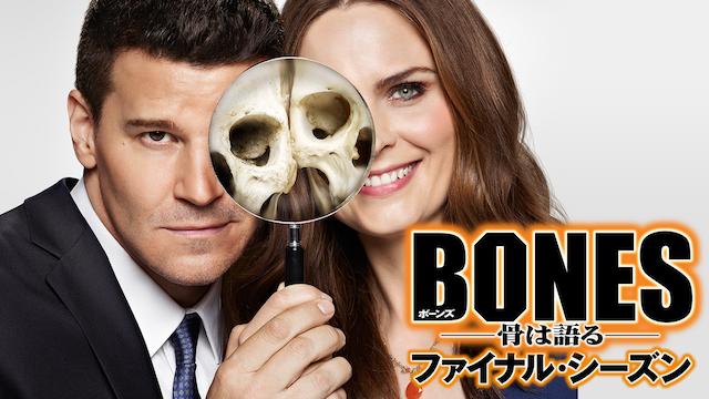 『BONES ―骨は語る― ファイナル・シーズン』が視聴できる動画配信サイト