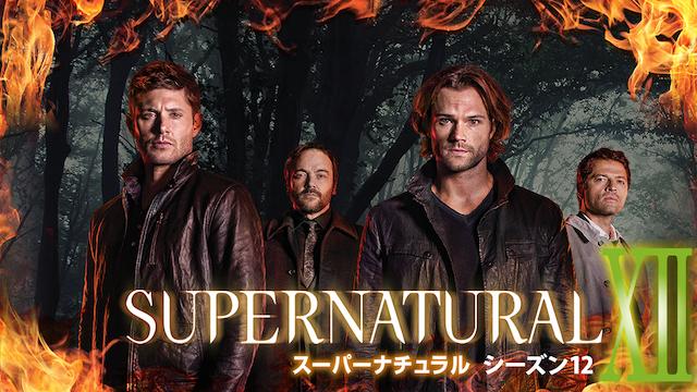 『SUPERNATURAL シーズン12』が視聴できる動画配信サイト