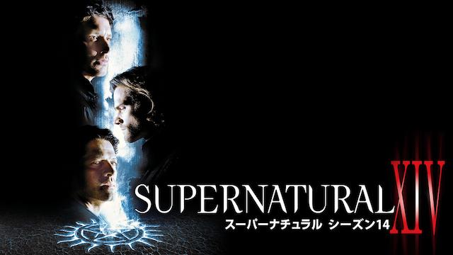 『SUPERNATURAL シーズン14』が視聴できる動画配信サイト